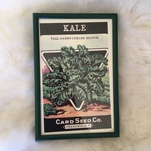 Retro framed Kale seed package